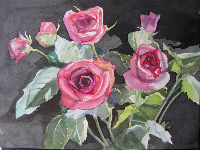 val's roses now meant to be more or less finished