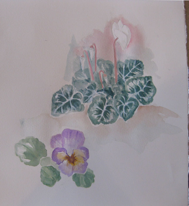 Jacqui's flower studies from last week