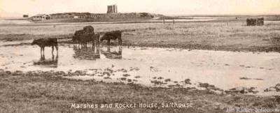 a view across the marsh , cows grazing and Great Eye on the sky-line with the Rocket House a silhouette