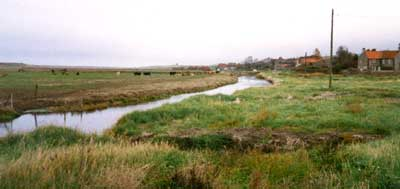 The Old Bakery (right of picture) and the marsh